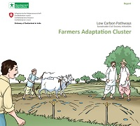 Farmers Adaptation Cluster
